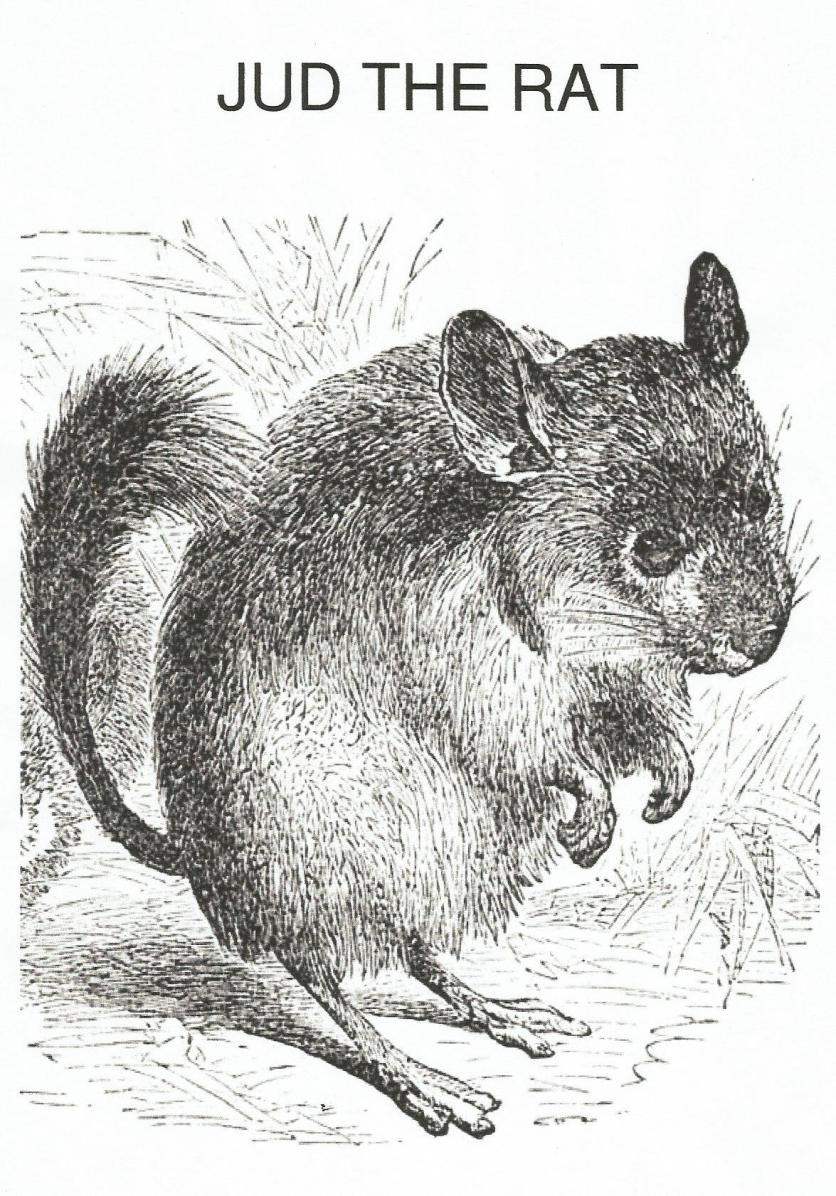 jud the rat (2)